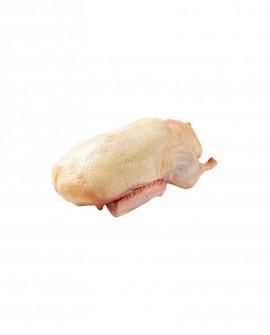 Anatra busto - 2,3kg sottovuoto - carne fresca pregiata, Quack Italia