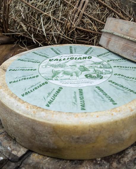 Valligiano di montagna latteria tenero intero 6kg stagionatura 30gg - Gildo Formaggi